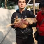 志愿者和一只很喜欢被人抱的大黄猫